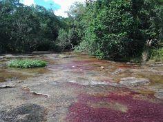 Caño Piedra Ubicado en el Municipio de La Macarena, departamento del Meta,   El municipio tiene una extensión total de 1.019.036 hectáreas comprendidas entre los 400 y 1.400 m.s.n.m con un clima de bosque húmedo tropical y una temperatura de 17 grados centígrados.  Extensión total:11.229 Km2 Extensión área urbana:213 Km2 Extensión área rural:11.016 Km2 Altitud de la cabecera municipal (metros sobre el nivel del mar): 233 Temperatura media: 25ºCº C Distancia de referencia: 225 a Uribe
