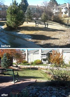 HOA Landscape renovation Before and After