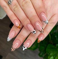 Best Acrylic Nails, Acrylic Nail Designs, Nail Art Designs, Zebra Acrylic Nails, Zebra Nail Art, Zebra Print Nails, Leopard Nail Designs, Striped Nail Designs, Grey Nail Art