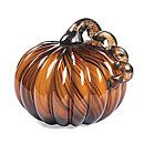 $14Tiger Striped Pumpkin