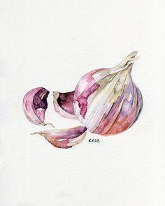 "Garlic Painting - Print from Original Watercolor Painting, ""Garlic Clove"", Kitchen Decor, Red Garlic"