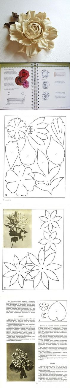 Discover thousands of images about SVG and PDF DIGITAL Anastasia paper flower template svg cut Paper Flower Patterns, Paper Flowers Craft, Crepe Paper Flowers, Paper Flower Tutorial, Paper Roses, Flower Crafts, Giant Flowers, Clay Flowers, Fake Flowers