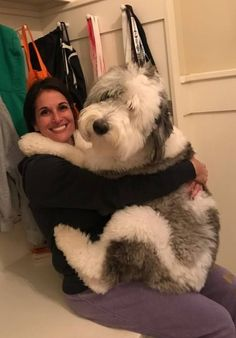 A comprehensive look at responsible and reputable Sheepadoodle breeders. Cute Dogs And Puppies, Baby Dogs, Doggies, Corgi Puppies, Cute Funny Animals, Cute Baby Animals, Funny Cats, Old English Sheepdog Puppy, Animals