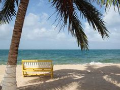 Living Rent Free And Earning An Income By The Beach In Belize