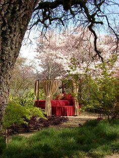lit de jardin plante rouge romantique idée de conception