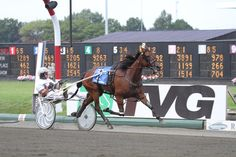 Bee A Magician - world champion daughter of Kadabra, Hambletonian Oaks winner & undefeated 13-for-13 this season, Horse of the Year candidate will showcase her talent in the Breeders Crown Three Year Old Filly Trot at Pocono Downs on Saturday, October 19th