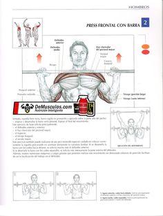 Hombros. Press frontal con barra. Más información en www.ejercicios.demusculos.com