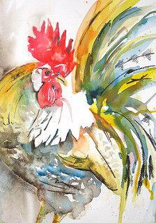 cockerel9aweb | by lizchaderton