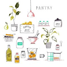 김혜빈 @moreparsley #spring #pantry...Instagram photo | Websta (Webstagram)