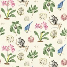 Sanderson - Traditional to contemporary, high quality designer fabrics and wallpapers | Products | British/UK Fabric and Wallpapers | Capuchins (DVOY223273) | Voyage of Discovery Fabrics