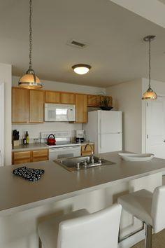 Lovely Modern Kitchen Baltimore