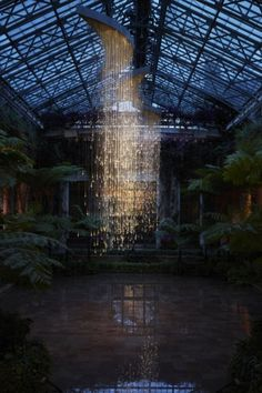 Light Art at the Cheekwood Botanical Garden in Nashville, Tennessee by Bruce Munro.