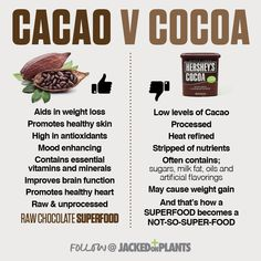 shake to gain muscle benefits of Take care of your body. It's the only place you have to live. Cacao Health Benefits, Healthy Tips, Healthy Recipes, Healthy Foods, Protein To Build Muscle, Muscle Protein, Chocolate Benefits, Cacao Recipes, Diy Beauté