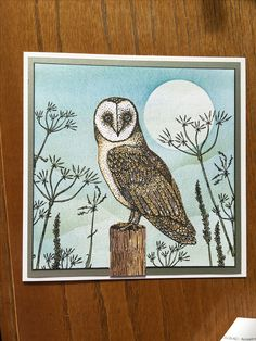 Oliver Owl Hobby Art Hobbies And Crafts, Beautiful Birds, Handmade Cards, Owls, Stamping, Card Ideas, Birthday Cards, Vintage World Maps, Card Making