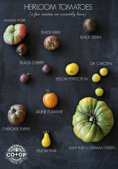 A Guide to Several Heirloom Tomato Varieties