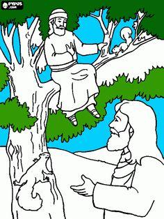 Zaqueu na árvore