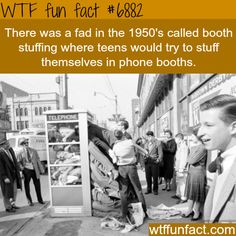 Telephone booth stuffing - WTF fun facts