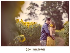 I want pictures in a sunflower field!