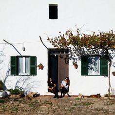 361/366 - Sun-seekers. #menorca #rural #sacanova #mobilephotography #project365