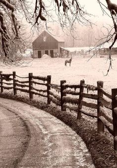 Winter Storm On fence.Horse and old Barn in background. Country Barns, Country Life, Country Roads, Country Living, Barn Pictures, Winter Pictures, Farm Barn, Old Farm, Winter Storm