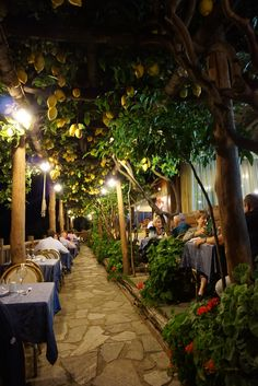 Dinner amongst the lemon groves at Ristorante la Costa diva, Praiano, Italy