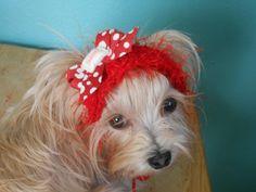 Valentine Crocheted Cat Headband Dog Headband  Red by Fancihorse
