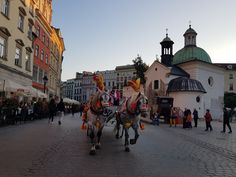 The Wild Wayfarer Wieliczka Salt Mine, Krakow, Old Town, Wayfarer, Beautiful Pictures, Old Things, Street View, Horses, Travel