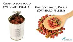 We've considered tons of criteria for this 2020 update on top dog food brands and found 15 best dry dog foods (grain free and well-balanced options). Top Dog Food Brands, Top Dog Foods, Best Dry Dog Food, Coconut Oil For Dogs, Canned Dog Food, Grain Foods, Grain Free, Homestead, Dog Food Recipes