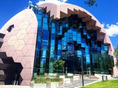 Geelong-Library-50 things to see and do in Geelong Australia