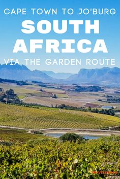 The complete South Africa Road Trip Guide: From Johannesburg to Cape Town via the Drakensberg, Addo Elephant National Park, and the Garden Route.  Blog by Travel Dudes: Community for Travelers, by Travelers!