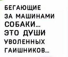 Айжан Мансурбаева - Google+ Russian Humor, Political Posters, Hilarious, Funny, Adult Humor, Man Humor, Good Mood, Satire, Wisdom Quotes