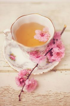 Cherry Blossoms and Tea. Cherry blossom tea is delicious if made right! Coffee Time, Tea Time, Café Chocolate, My Cup Of Tea, High Tea, Drinking Tea, Afternoon Tea, Cup And Saucer, Herbalism