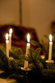 Classic look - real candles on the tree are indescribably beautiful! www.christmasgiftsfromgermany.com