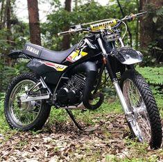 Tracker Motorcycle, Scrambler Motorcycle, Dt Yamaha, Audi A3, 4x4, Knight, Bike, Vehicles, Portal