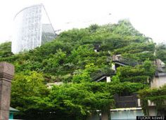 8 Rooftop Gardens From Around The World (PHOTOS)