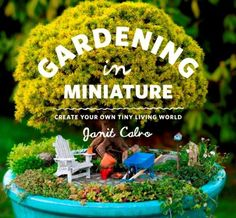 Gardening in Miniature: Create Your Own Tiny Living World by Janit Calvo. Get ready to journey into the huge world of growing small! The next garden trend combines the joy of gardening with the magic of miniatures. Miniature Plants, Miniature Fairy Gardens, Garden Care, Cool Plants, Mini Plants, Water Plants, Potted Plants, Cactus Plants, Fairy Houses