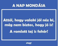 A nap mondása. Funny Quotes, Life Quotes, Einstein, Quotations, Funny Pictures, Jokes, Mindfulness, Wisdom, Positivity