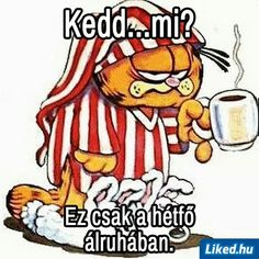 Animals And Pets, Funny Animals, Biro, Funny Moments, Good Morning, Back To School, Disney Characters, Fictional Characters, Funny Pictures