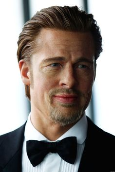 Brad Pitt Backs Obama: 'Gay Marriage Is Inevitable'