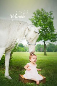 www.lizfenwickphotography.com Unicorn pics, Pony pics