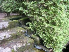 garden steps, stone steps, water feature