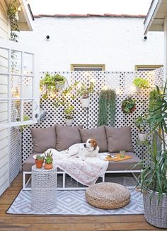 Design Evolution: See a Tiny Patio Change Over 5 Years / via @apttherapy