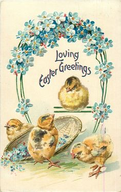 LOVING EASTER GREETINGS  four chicks & basket below blue forget-me-nots