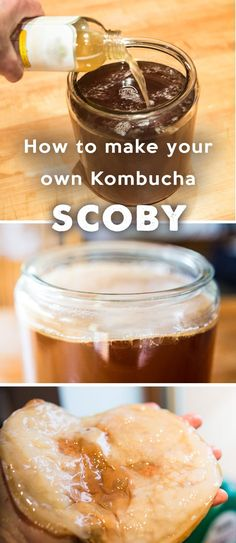 How to Make Your Own Kombucha Culture – SCOBY How to Make Your Own Kombucha Culture – SCOBY. Start making kombucha from scratch – even if you can't find a scoby. Make Your Own Kombucha, Kombucha Starter, Kombucha Benefits, Kombucha Scoby, How To Brew Kombucha, Kombucha Recipe, Making Kombucha, Kombucha Brewing, How To Make Scoby