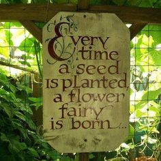 Every time a seed is planted, a flower fairy is born.