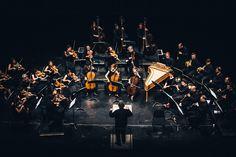René Jacobs führt gemeinsam mit dem B'Rock Orchestra bei uns seine Auseinandersetzung mit dem Symphoniker Schubert fort. Zu hören ist u.a. die Unvollendete. Study Habits, Rock, Cello, Chefs, Tattoo Ideas, Bandleaders, Teaching Time, Conductors, Opera