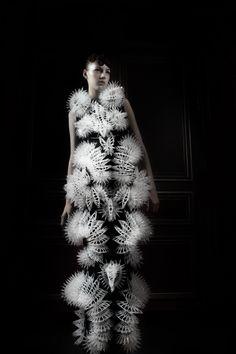 Haute Couture   Iris van Herpen