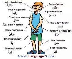 Arabic Phrases, Arabic Words, Arabic Quotes, Arabic Alphabet, Alphabet For Kids, Arabic Lessons, English Language Learning, Arabic Language, Learning Arabic