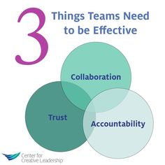 Few leaders would disagree that effective teamwork is essential to the good health of an organization, but many would admit that the teams they lead do not function as effectively or efficiently as they would like. Why is this? Why is it that sincere, hardworking people who care about the places in which they work cannot achieve the results that might be expected of them?