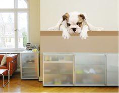 No.157 Kleine Bulldogge